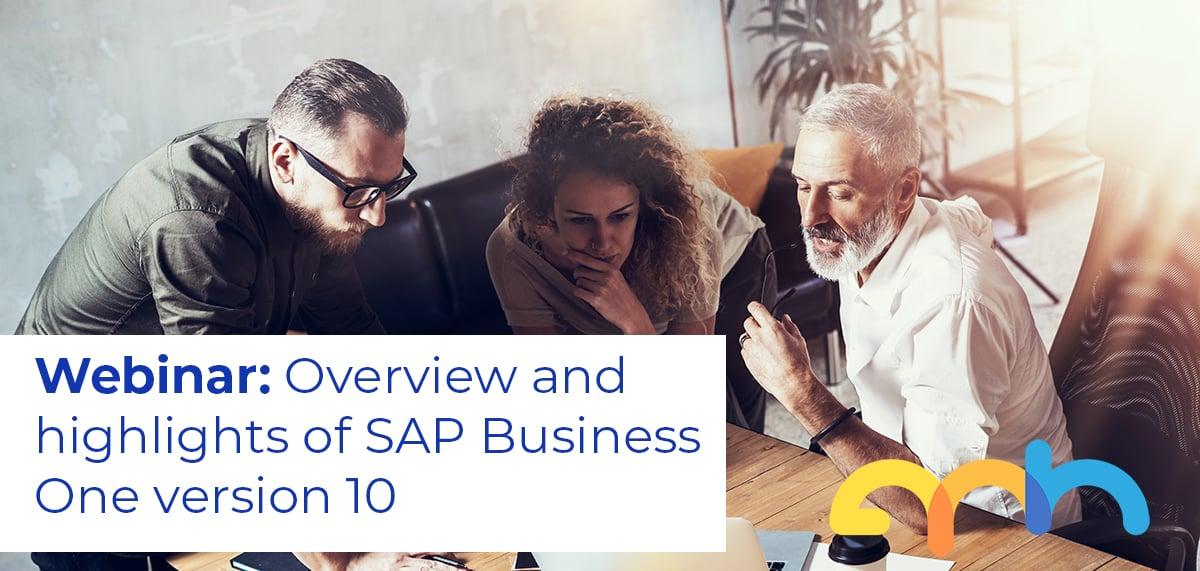 SAP B1 v10 banner
